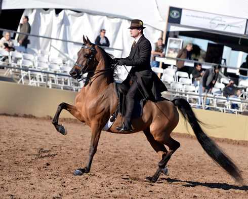 2013scottsdale_emperors_fire_trot